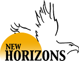 New Horizons RV